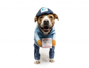 a photo of a do dressed in a mailman costume